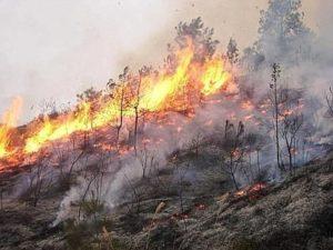 Incendio-Isili