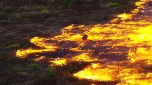 incendi_amazzonia-625x350