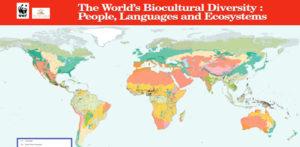 biodiversita-499